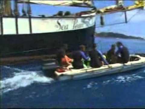 Tours-TV.com: Seychelles, diving