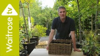 Planting Feature Herb Containers With Matt James - Waitrose Garden