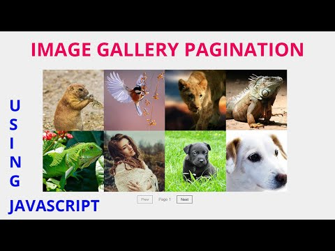 Image Gallery  Pagination using by Html Css Javascript thumbnail