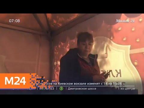 В Отрадном продавец хранил товар рядом с мусоропроводом - Москва 24