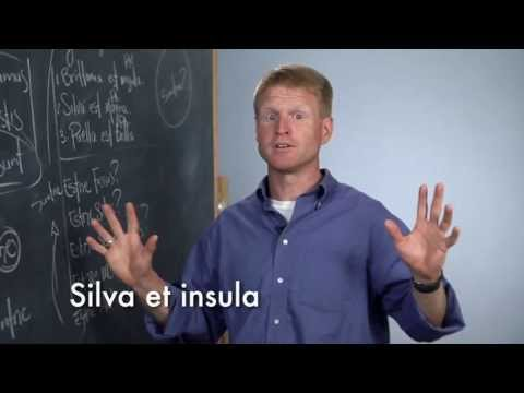 Visual Latin | Sample Lesson 1A | Being Verb Basics - To Be and Not To Be