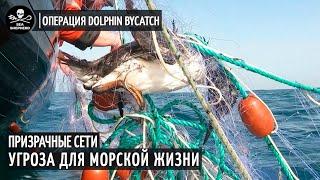 Когда Рыболовство Превращает Океан в Минное Поле (Операция Dolphin ByCatch) • Sea Shepherd