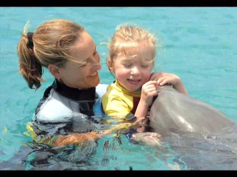 dolphin assisted therapy Workshops the more you know about dolphin assisted therapy and related topics, the more positive benefits you will be able to get from it our multidisciplinary team offers parents a range of informative talks and interactive workshops.