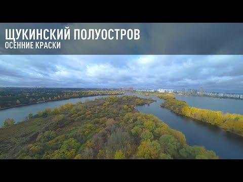 Щукинский полуостров. Осенние краски.