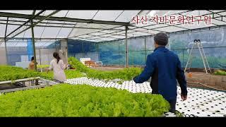 수경재배 사산 자바문화연구원