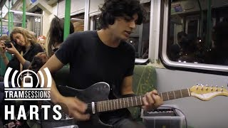 Harts - Back to the Shore | Tram Sessions