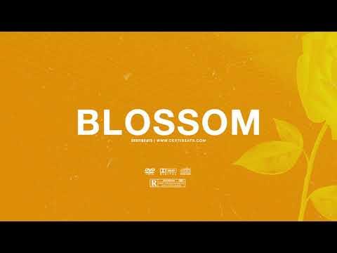 "(FREE) | ""Blossom"" | Swae Lee x Popcaan x Drake Type Beat Free Beat Dancehall Pop Instrumental 2019"