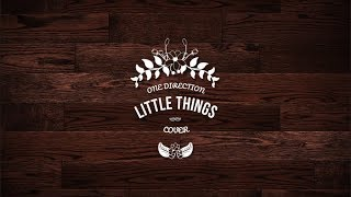 One Direction - Little Things (Cover)