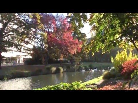 Christchurch in Autumn