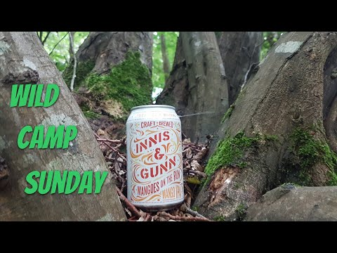 Hammock Wild Camping In Woodland | Beer Review In The Woods | Wild Camp Sunday, England.