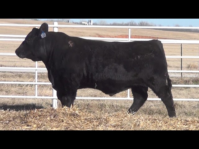 Express Ranches Lot 160