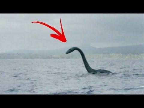 Das Ungeheuer von Loch Ness gesichtet?! | MythenAkte