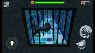 ► Scary Shark Evolution 3D - Hungry Shark Evolution - Android Gameplay