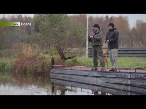 Рыбалка за Рулем 2_2 (Дмитровское шоссе)