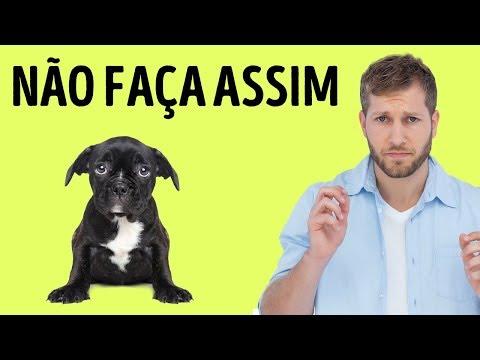 12 Coisas que Seu Cão Odeia em Você