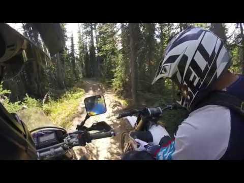 Klone Peak dual sport paradise DRZ400