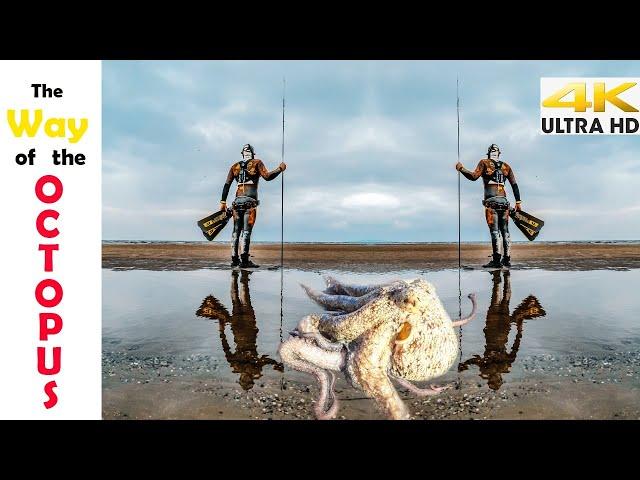 ΡΗΧΟ ΨΑΡΟΝΤΟΥΦΕΚΟ ΧΤΑΠΟΔΙ🐙Το Μυστικό για να γίνει μαλακό | Spearfishing Life 🇬🇷 [4K]✅