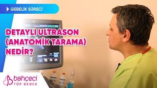 Detaylı Ultrason (Anatomik Tarama) Nedir? - Bahçeci Tüp Bebek Merkezi