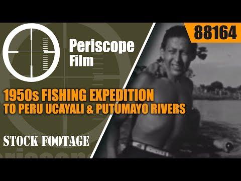 1950s FISHING EXPEDITION TO PERU   UCAYALI & PUTUMAYO RIVERS  88164