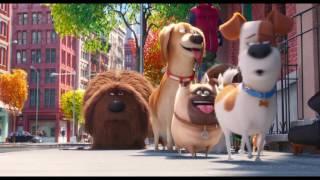 Тайная жизнь домашних животных - Трейлер №3 (дублированный) 1080p
