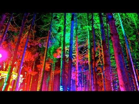 Welcome to the Electric Forest: 2014 Hype Up
