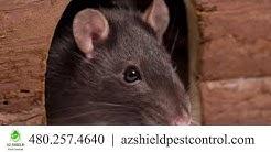 AZ Shield Pest Control   Skilled Trades & Services, Pest Control  