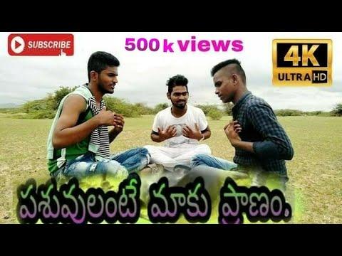 Pashuvulante maku Pranam song Dj dance remix song Dj
