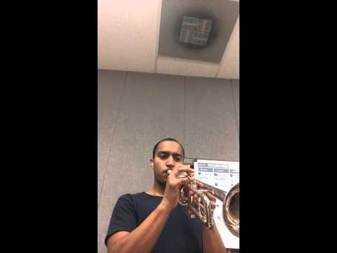 Working day and night- horn section