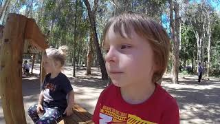 Australia Klary i Karola - zwierzęta Australii