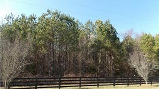 Lot/Land for sale - #19 Sherrer RD, York, SC 29745