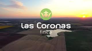 """La esencia de la Finca """"Las Coronas"""" (Carmona) - Aloe vera"""