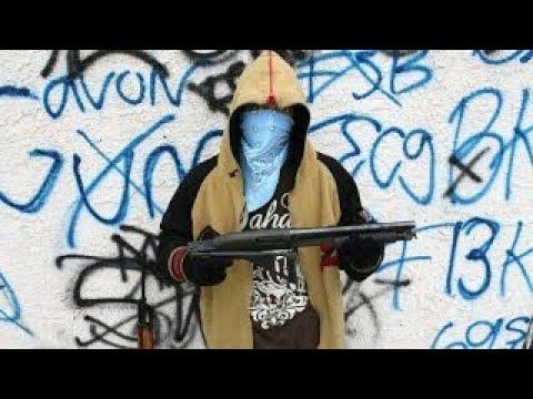 Documentaries Gangs in Los Angeles Documentary 2017 : Hispanic Vs. Black Gang War