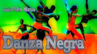 danza negra poema de luis palés matos poeta puertorriqueño