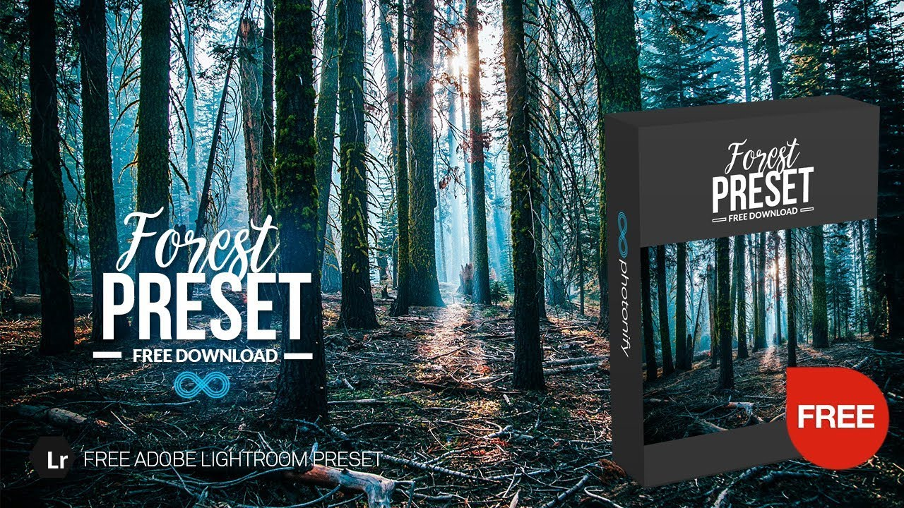 Free Forest & Woodlands Lightroom Preset by Photonify