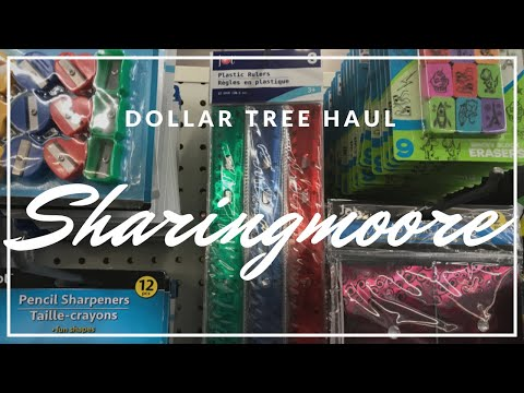 Dollar Tree Haul ~ Aug 2020 {Sharingmoore}
