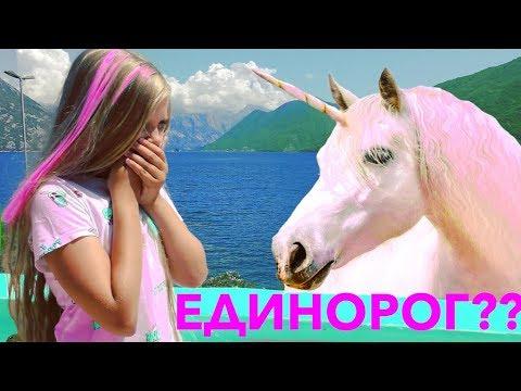 НАСТОЯЩИЙ ЕДИНОРОГ ??🌈  НОВЫЙ ПИТОМЕЦ - Видео про ЕДИНОРОГА И .. !!! Видео для детей