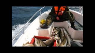 Мурманские морские рыбалки  Флинт 520  2014(Морская рыбалка на Флинт 520. Морская рыбалка в Баренцевом море. Треска, сайда, пикша, морской налим, зубатка,..., 2014-08-31T20:11:09.000Z)