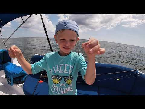 Charlie Fishing In Steinhatchee, Florida