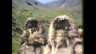 Doctor Who The Abominable Snowmen Location Film No Audio