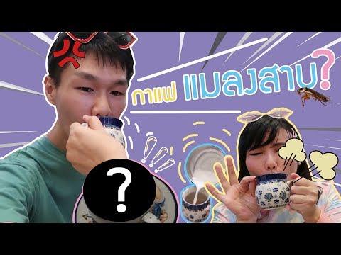 กาแฟแมลงสาบ รสชาติเป็นงี้นี่เอง Vlog