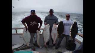 Monster Halibut, Channel Islands Sports Fishing, California Halibut