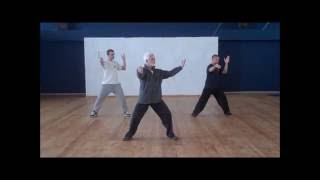 Wudang Tai Chi Chuan (Cheng Tin Hung/Dan Docherty) short form - טאי צ'י