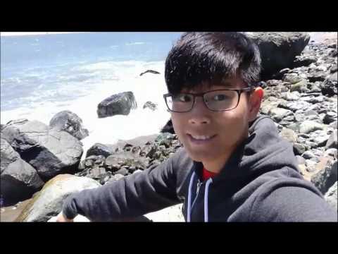 Jeff's Internship Video