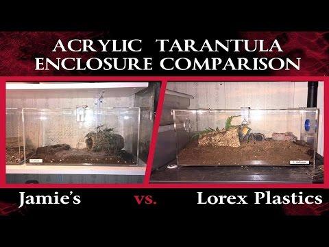 how to make an acrylic tarantula terrarium part 1. Black Bedroom Furniture Sets. Home Design Ideas