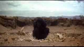 2001 Space Odyssey theme - Monkey and Bone. Dawn of Man. HD