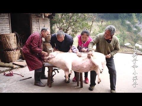 肥豬身手矯健抓不住,3個農村漢圍著團團轉,來個美女才把它搞定【小英子和小萍子】