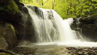 The Waterfalls of State Game Lands 13 - Sullivan County, PA