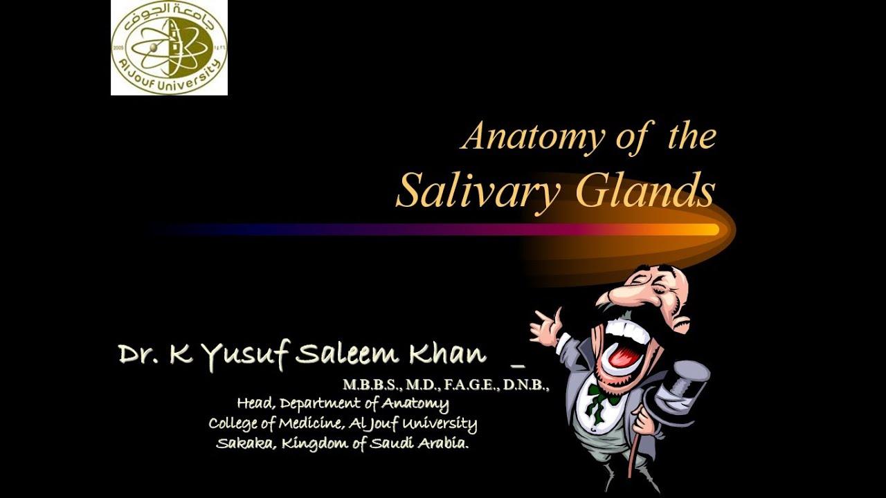 Anatomy Lecture on Salivary Glands (Parotid, Sub-Mandibular &Sub ...