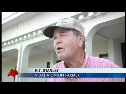 May 20, 2011- GA Law Worries Illegal Immigrants, Onion Farmers