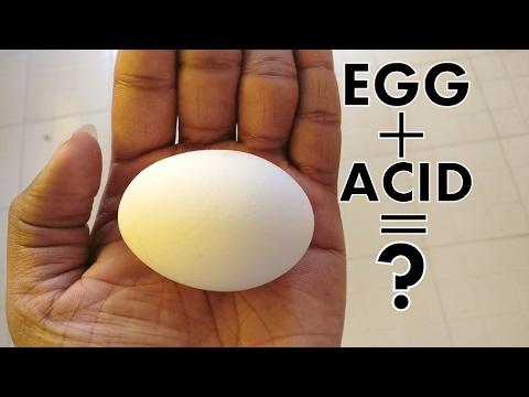 EXPERIMENT : EGG + ACID (NO EDIBLE HALF FRY)